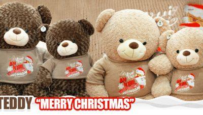 Gấu Teddy Merry Chrismas